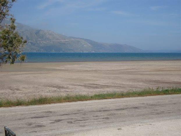 Ενώ πρώτα η θάλασσα έφθανε σχεδόν μέχρι το δρόμο τώρα μπορεί ο καθένας να παρατηρήσει πόσο έχει απομακρυνθεί. (Φωτογραφία: Πανεπιστήμιο Αθηνών, Τμήμα Σεισμολογίας)
