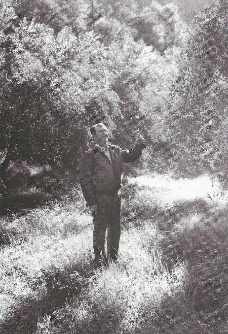 Αγρότης στον ελαιώνα, Βασιλική 1995