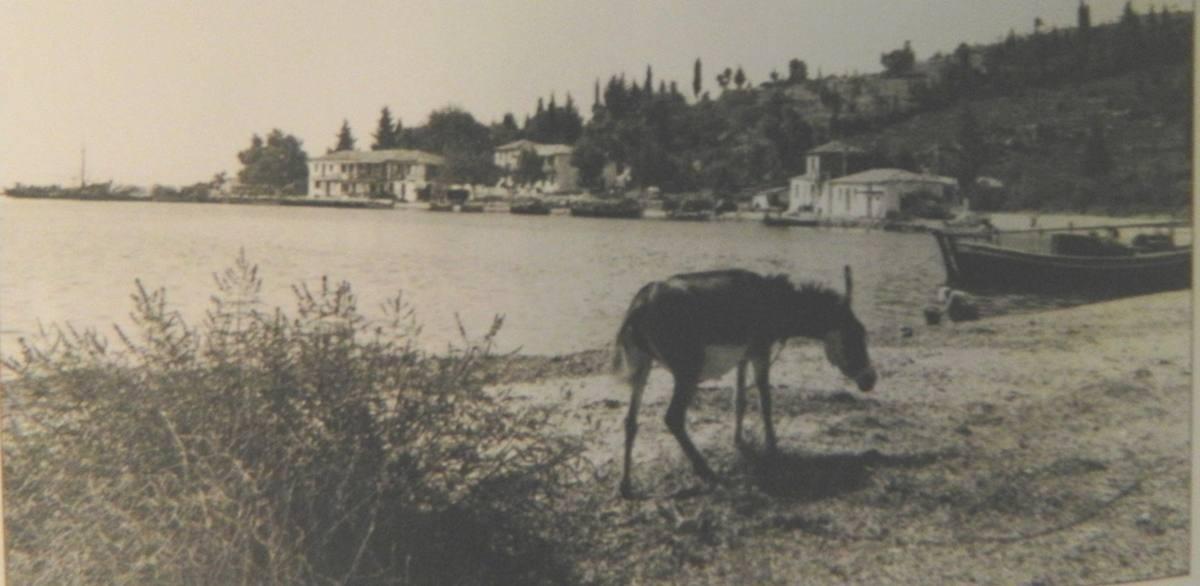 Λυγιά 1965