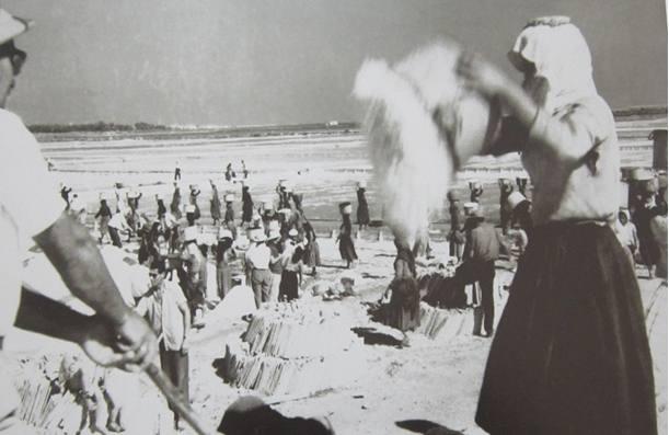 Αλυκές Αλεξάνδρου 1960